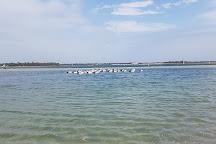 Ian Dipple Lagoon, Labrador, Australia