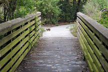 Pondhawk Natural Area, Boca Raton, United States