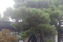 Crespi Bonsai Parabiago, Parabiago, Italy
