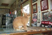 Henry's Rabbit Ranch, Staunton, United States