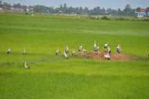 Agro Tourism Cambodia, Siem Reap, Cambodia