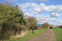 Bow Creek Ecology Park, London, United Kingdom