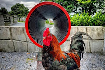 Graune Pet Farm & Play Centre, Ballyhaunis, Ireland