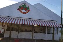 Parkesdale Farm Market, Plant City, United States