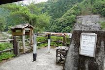Yaen, Totsukawa-mura, Japan