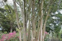 Oakwood Cemetery, Huntsville, United States
