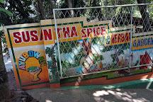 Susantha Spice and Herbal Garden, Sabaragamuwa Province, Sri Lanka