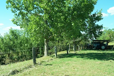 Muswellbrook North Side Bed & Breakfast