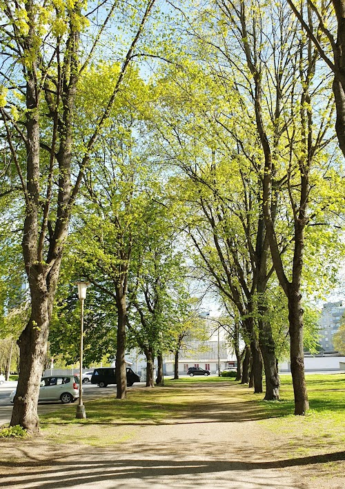 Tiigiveski park