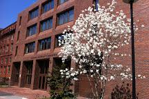 Harvard University Herbaria, Cambridge, United States