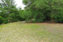 Boca Ciega Millenium Park, Seminole, United States