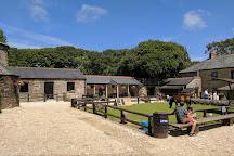 Healey's Cornish Cyder Farm, Truro, United Kingdom