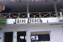 Jarro Beach Disco, Barra de Navidad, Mexico