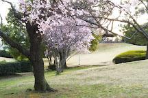 Central Park, Urayasu, Japan