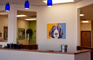 Dogs by Design Inc.