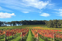 Centennial Vineyards, Bowral, Australia