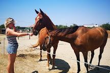 Kardamena Horse Riding Center, Kardamena, Greece