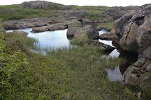 Asbyrgi (Shelter of the Gods), Iceland