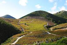 Milos Winery, Ston, Croatia