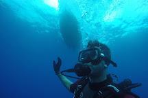 Diving Salou, Salou, Spain