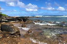 Wyllie's Beach, Kilauea, United States
