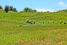 Los Trancos Open Space Preserve, Palo Alto, United States
