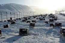 Galleri Svalbard, Longyearbyen, Norway