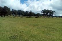 Galway's Land National Park, Nuwara Eliya, Sri Lanka