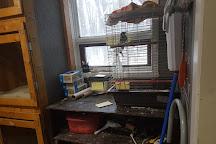 Wild Bird Care Centre, Ottawa, Canada