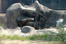 Washington Park Zoo, Michigan City, United States