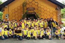 Bee Gallery Penang, George Town, Malaysia