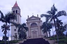 Igreja Matriz N S da Conceição, Urussanga, Brazil