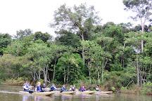 Pacaya Samiria National Reserve, Loreto Region, Peru