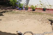 Snake Farm, Matara, Sri Lanka