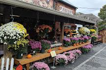 The Village Farm Market, Ephrata, United States