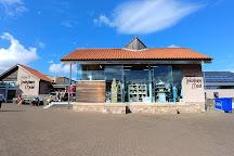 Lindisfarne Mead, Berwick upon Tweed, United Kingdom