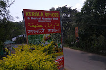 Kerala Spices & Herbal Garden Visit, Kumily, India