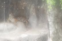 Sriracha Tiger Zoo, Chonburi, Thailand