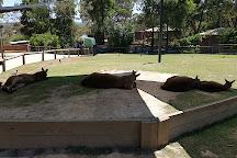 Ballarat Wildlife Park, Ballarat, Australia