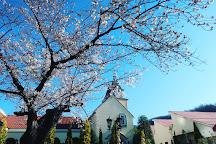 Sadoya Winery, Kofu, Japan