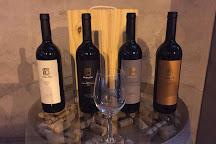 Huarpe - Riglos Wines, Agrelo, Argentina