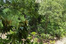 Tobago Cocoa Estate W.I. Ltd, Roxborough, Trinidad and Tobago