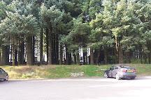 Bodmin Moor, Bodmin, United Kingdom