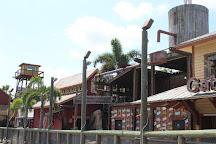 Gator Golf And Adventure Park, Orlando, United States