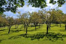 Walnut Hill Park, New Britain, United States
