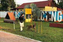 NPA Explosive Detection Dogs, Siem Reap, Cambodia