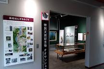Hanzaki Center, Maniwa, Japan