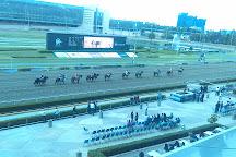 Hipodromo de las Americas, Mexico City, Mexico