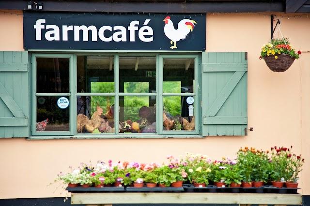 Farm cafe + shop