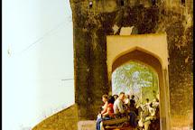 Elefun, Amer, India
